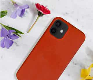 Apple in Phone Cases