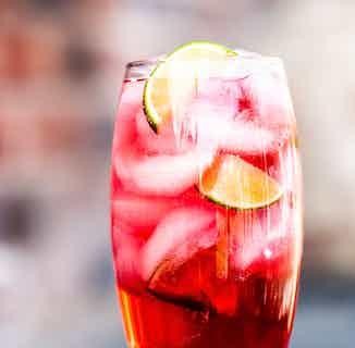 Organic Kombucha | Raspberry & Tulsi | 330ml | Single or Multi from Loving Foods in Kombucha, Drinks
