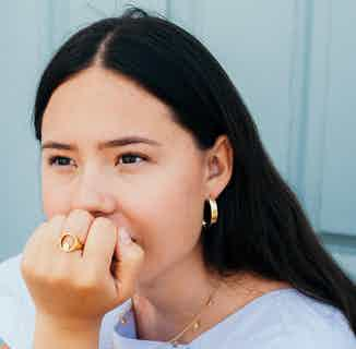 Pip Collection   Sustainably Sourced Apple Pip Signet Ring   Gold from Little by Little in Rings, Jewellery