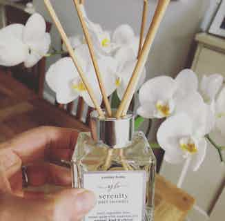 Serenity | Natural Essential Oil Reed Diffuser | Pure Lavender | 100ml from Yummy Home in Scents & Fragrance, Homeware