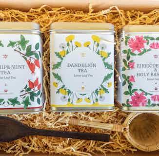 Luxury Botanical Tea Gift Set from Clean U Skincare in Tea, Drinks