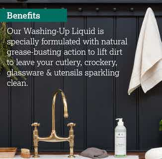 Eco- Friendly Sustainable Washing Up Liquid | 500ml from Delphis Eco in Cleaning Products, Household & Laundry