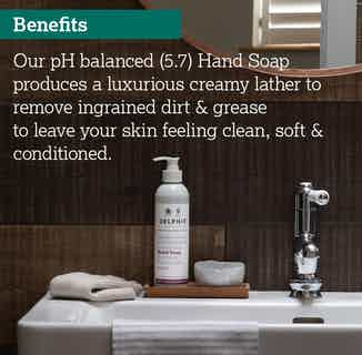 Eco- Friendly Sustainable Liquid Hand Soap Wash | 350ml from Delphis Eco in Soaps & Hand Wash , Hygiene