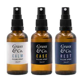 Dream Team Kit from Grass & Co. in Sustainable Beauty & Health,