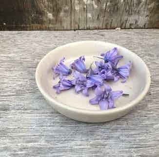 Marston Dish from Oxford Clay in Decorative, Homeware