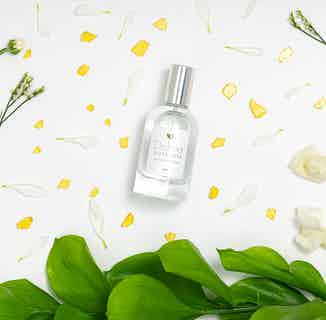 Andromeda from Dolma in Fragrances, Sustainable Beauty & Health