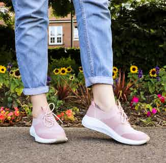 Jessica | Recycled Polyester Lace-up Flyknit Trainer | Dusty Pink from Shu Da Living in Trainers, Footwear