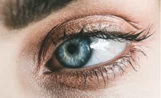 Eyes in Makeup & Cosmetics