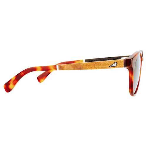 Kaka   Caramel from Bird Sunglasses in Sunglasses, Accessories