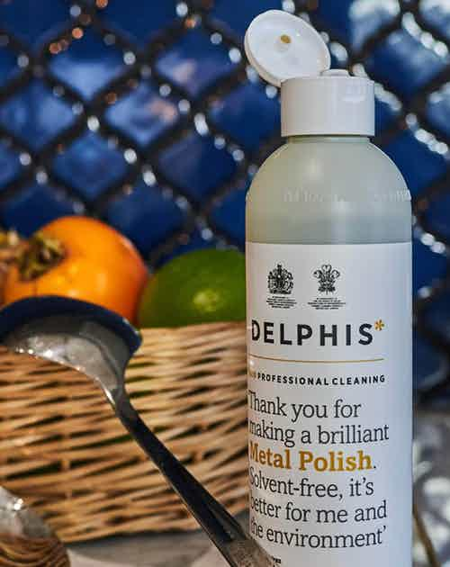 Metal Polish (350ml) from Delphis Eco in Cleaning Products, Household & Laundry