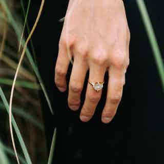 Seville Crown Ring, Gold and Silver from Little by Little in Rings, Jewellery