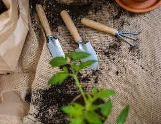 Garden & Outdoor in Home & Leisure