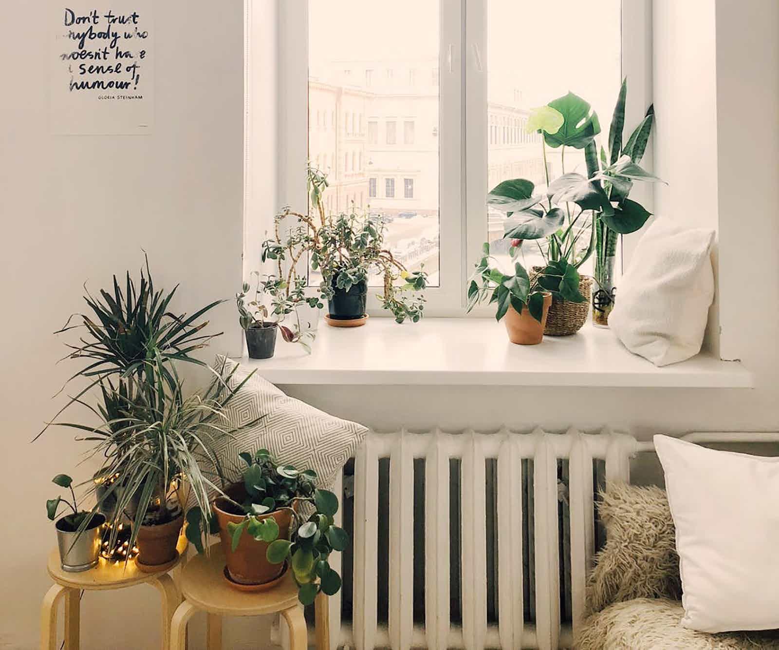 Home & Leisure